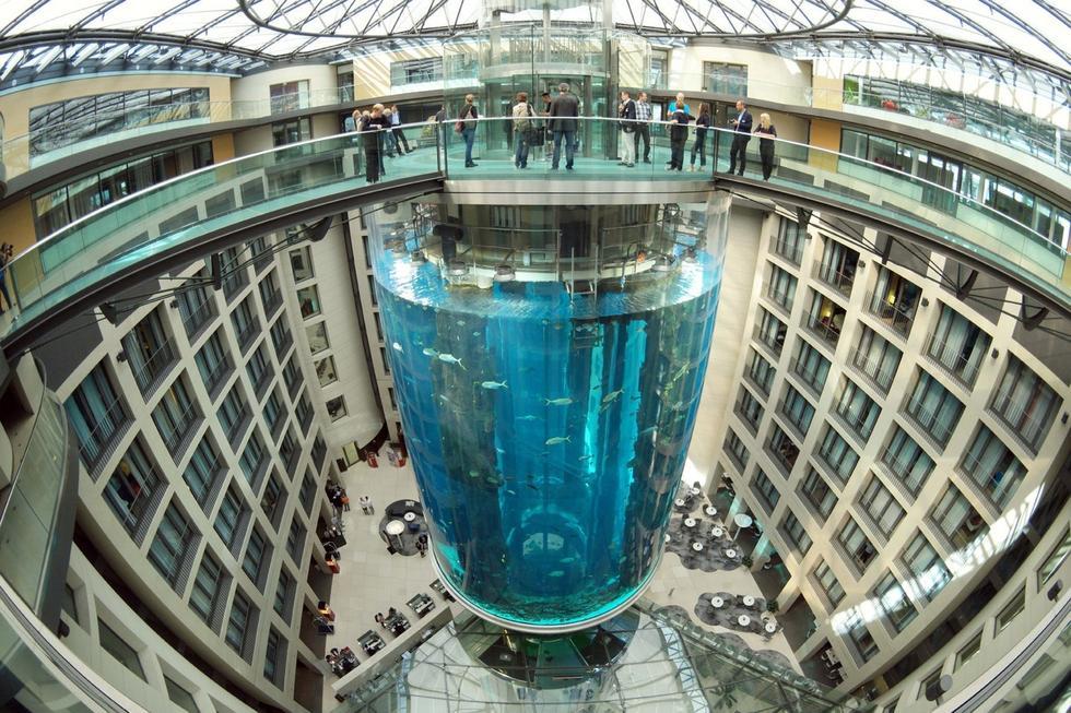 德国建8层楼高巨型鱼缸 游客可乘电梯观光